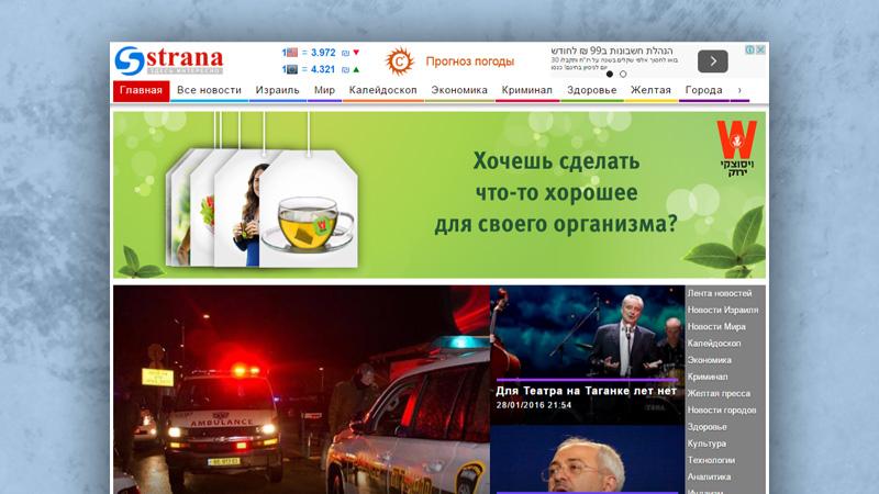 בניית אתר - פורטל Strana